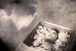 El entierro de Allan Grey