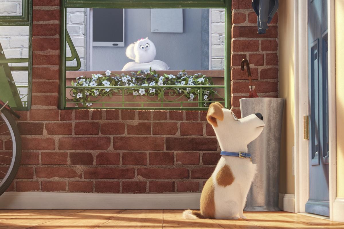 Crítica de 'Mascotas', de los humanos que crearon 'Gru'